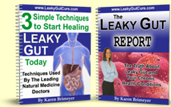 Leaky Gut Ebook
